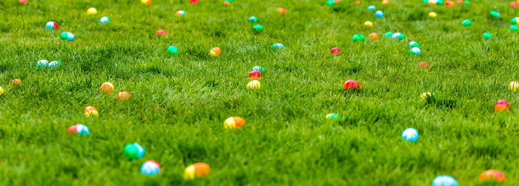 Saint Vincent's Adult Easter Egg Hunt Sponsorship